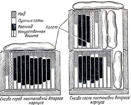 Схема постановки второго