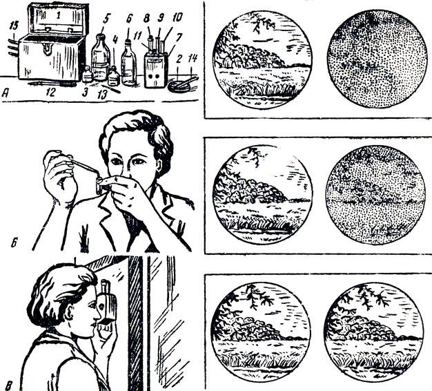 бастерфорт лекарство от паразитов инструкция